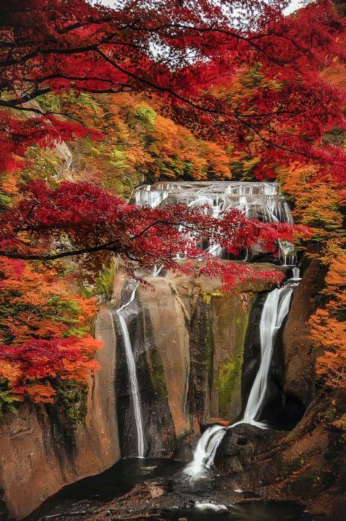 Fall in Fukuroda Falls, Ibaraki, Japan