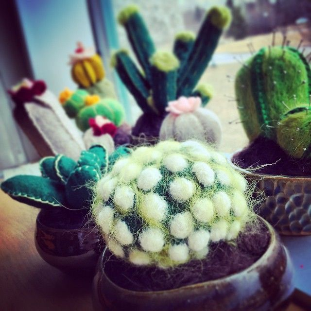 It's a gloomy day out there but these little guys in my window are making my Monday. #snowinMarch #snowway #feltedplantsdefyingtheseason #greenallyearbaby #cactus #succulent #felt #makeallthethings -K