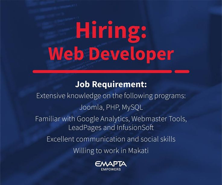 web developer cv