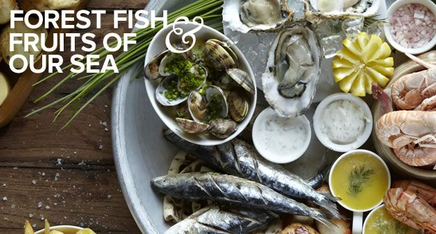 Its little-known, 40 mile coastline, stretching from Calshot at its eastern end, to Christchurch in the west, is where some of the best British seafood and fish are landed after being sustainably caught. Our New Forest chefs have always enjoyed crafting both classic and new seafood dishes from this ocean bounty, as much as they enjoy serving up the freshwater species caught in the region for diners to enjoy.