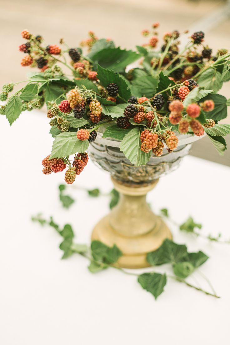 a shrub of blackberries in a old vase Deutsch-Schottische Hochzeit in Dresden
