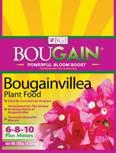 BouGain Bougainvillea Fertilizer. Care and feeding of bougainvillea.