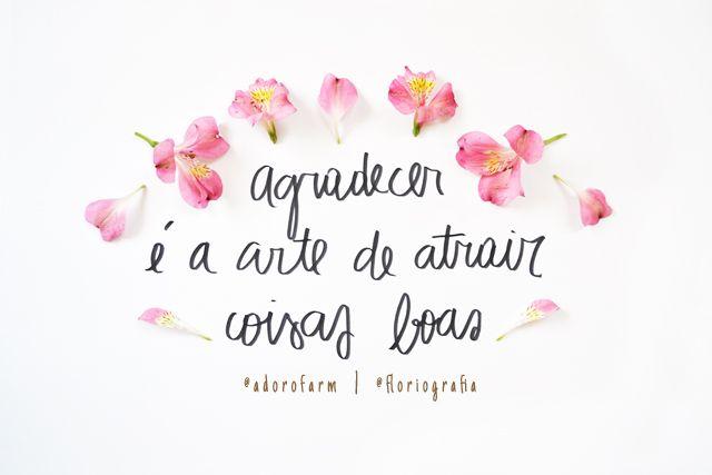 Floriografia: Astromélia no @adorofarm