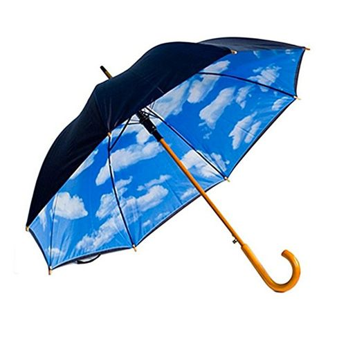 Designer Umbrella with Perfect Day Sky Print Inside - The Product Promoter