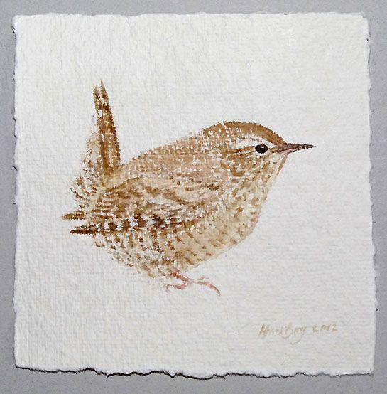 Wren Bird Art by Bird Artist Hans Borg
