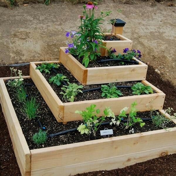 34 best images about herb garden plan on pinterest for Vegetable garden planter box designs