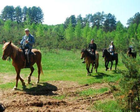 Horseback riding in Tver region