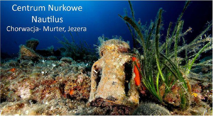 http://www.nautilus.com.pl/images/Chorwacja-Jezera-BazaNurkowaNautilus.pdf