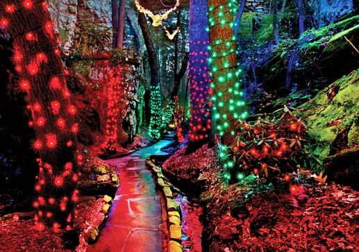 Enchanted Garden of Lights in Rock City. Chattanooga fun!!