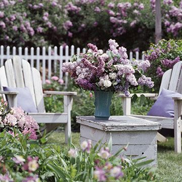 lilac: Gardens Ideas, Adirondack Chairs, Cottages Gardens, Shabby Chic, Relaxing Places, Outdoor Spaces, Outside Spaces, Flowers Shrubs, White Picket Fence