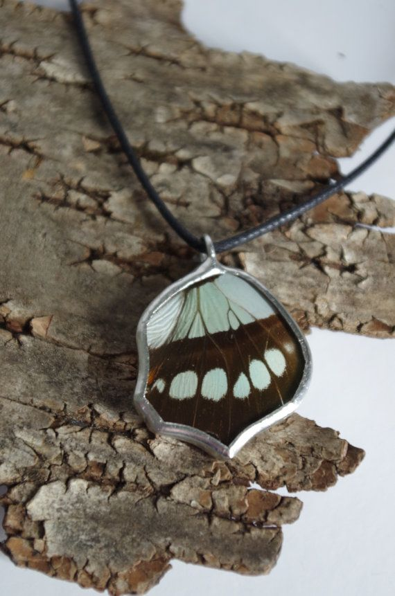 This pendant is made using a real butterfly wing. The Malachite Butterfly, Siproeta stelenes, is a stunning Central and South American