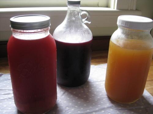 Lacto-Fermented Sodas | City Market / Onion River Co-op