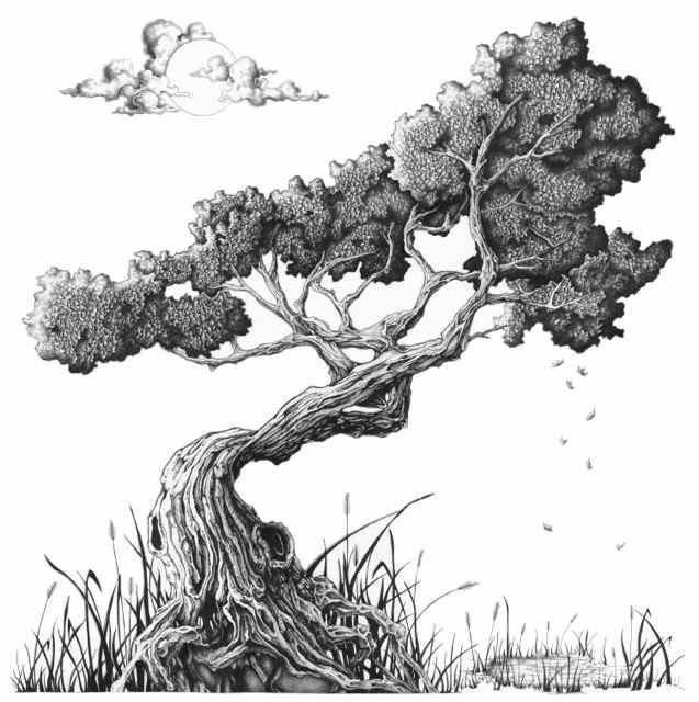 Bonsai Tree by RoninEyeCreations.deviantart.com on @deviantART