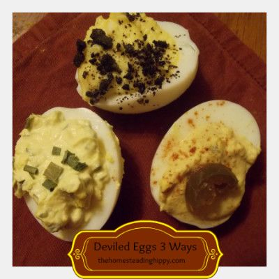 as mayo creamy zesty deviled eggs are always a favorite deviled eggs ...