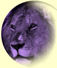 The website of the Acton California Lions Club.Yes!  be careful, as there is also a Acton Massachusetts Lions Club