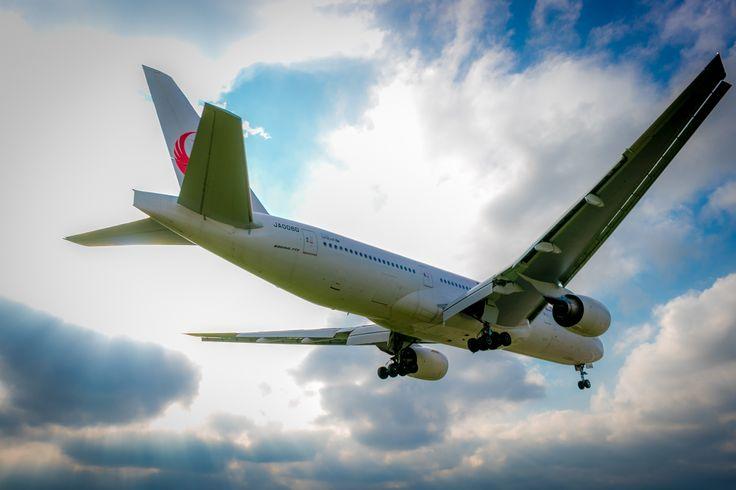 JAL 777-200 JA008D