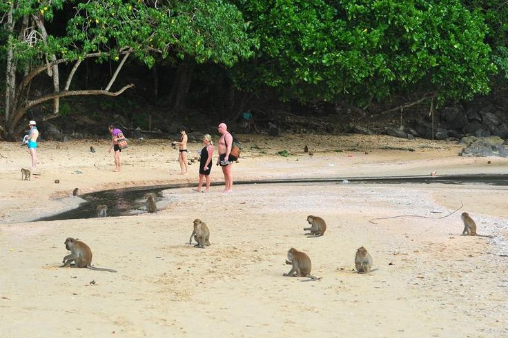 Destination: Ao Nang - the beach with massages, monkeys ...