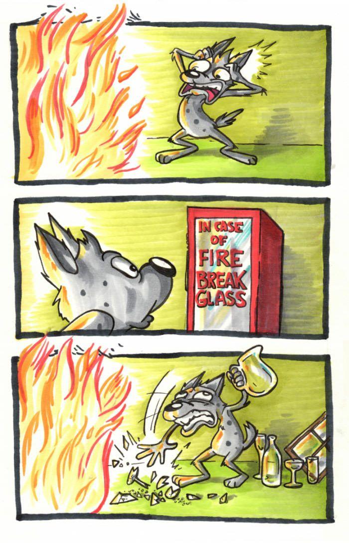 In case of fire break glass.