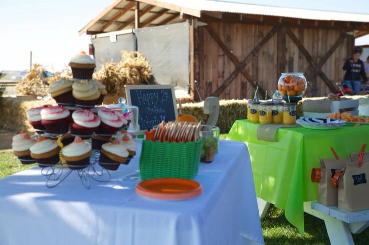 Backyard Pumpkin Patch Party :  McCleary on Victorias second birthday Pumpkin patch!  Pinterest