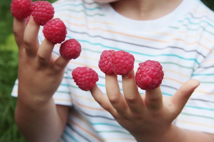 diritto all'uso delle mani