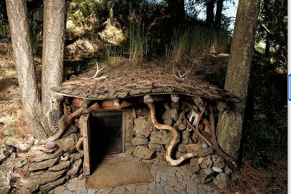 """...So I dug into the hill side and made a tiny (8 ft) underground room with a skylight...I have now been in the ""Hobbit House"" for almost 10 years."""