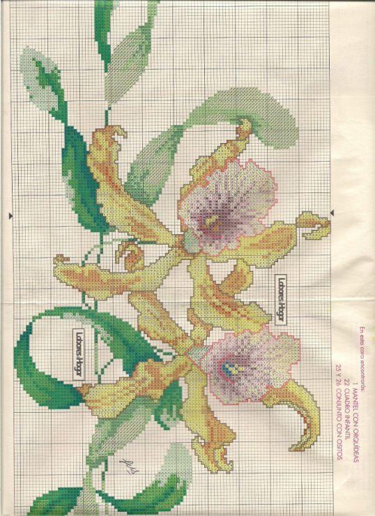Gallery.ru / Фото #9 - Orquideas - mariacece