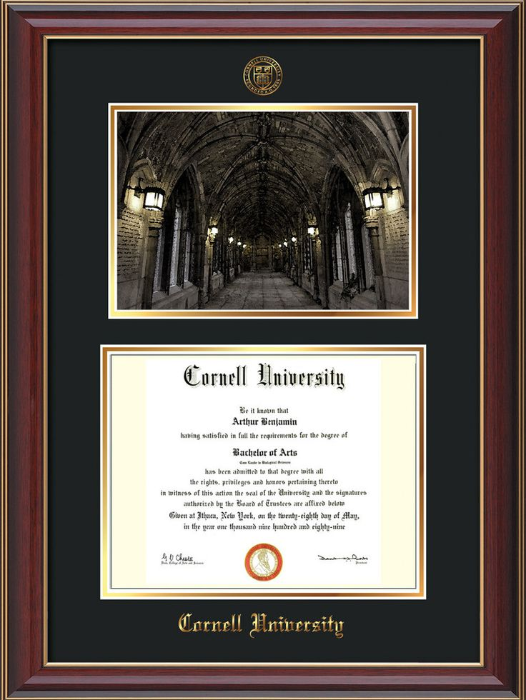 Cornell U Diploma Frame-Cherr Lacquer-War Memorial Photo-Black on Gold – Professional Framing Company