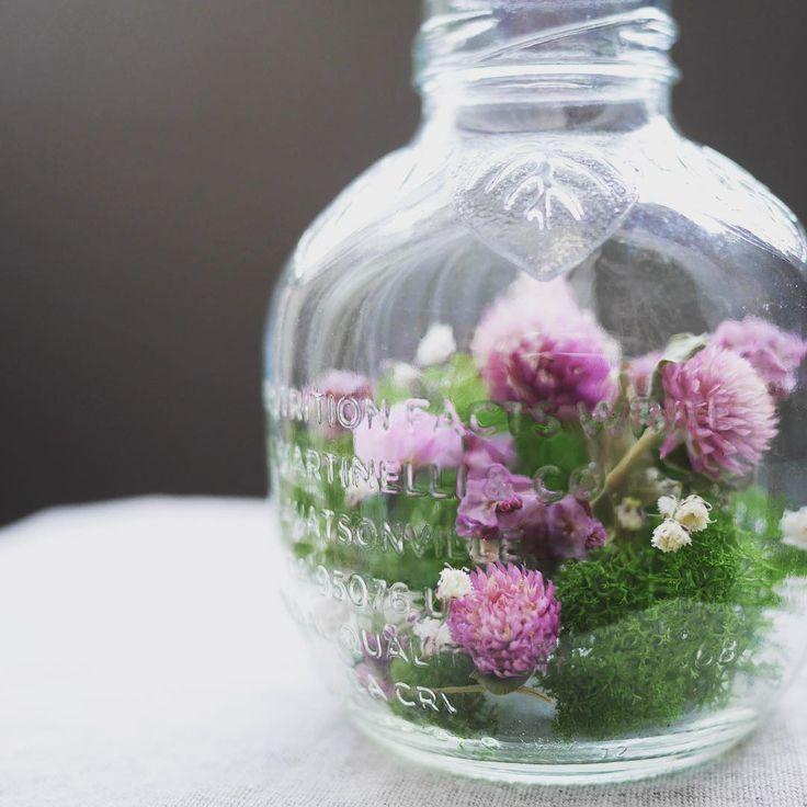 結婚式でもらったプチギフトのマルティネリのビンをリメイク かわいいビンが捨てられなくて… 中のカスミソウも式の装花で使ってたのをもらって、ドライフラワーにしたもの 素敵な式を思い出します #ドライフラワー #ハンドメイド #リメイク #マルティネリ #プチギフト #dryflower #handmade #remake #martinelli #weddinggift http://gelinshop.com/ipost/1518824715334192612/?code=BUT8wgRlA3k