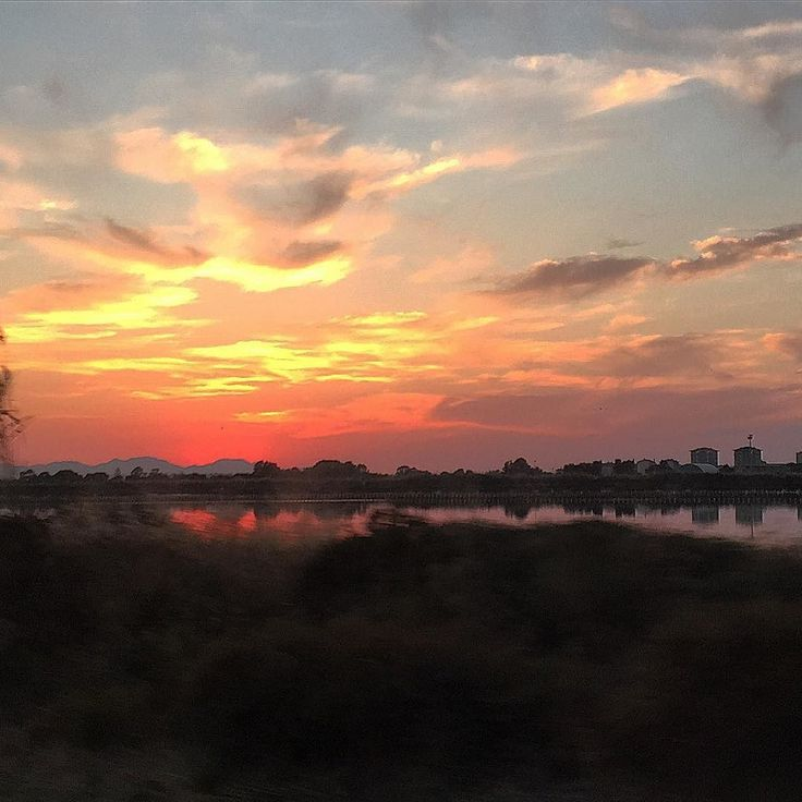My photo of CA's sunset #molentargius #saline