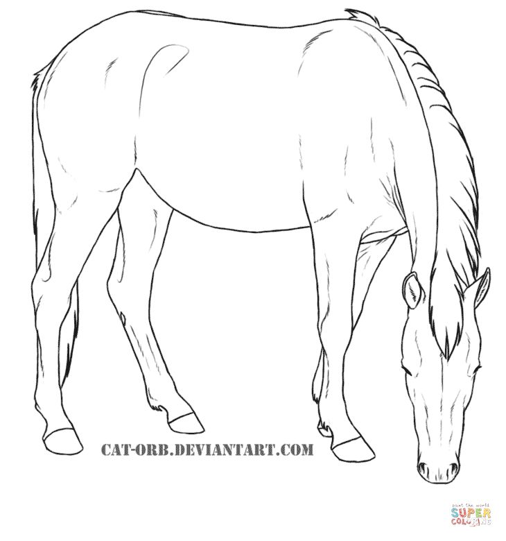 dark bay horse coloring pages - photo#48