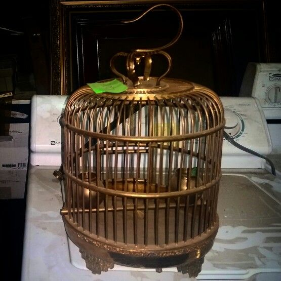 Vintage Brass bird cage for sale email info@southernresources.com or call 704-342-1696