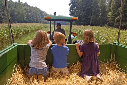 hayride!!: Hayrid, Childhood Memories, Autumn, Country Kids, Safety Tips, The Farms, Children, Country Life, Hay Riding