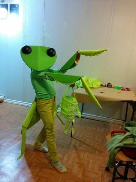 Adorable praying mantis costume for the bug lover in your life.