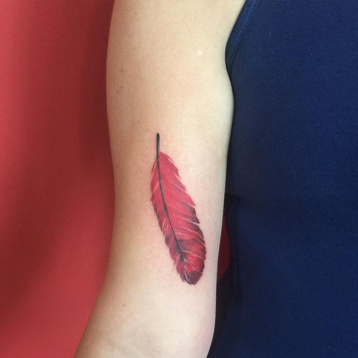 red feather tattoo - Google Search