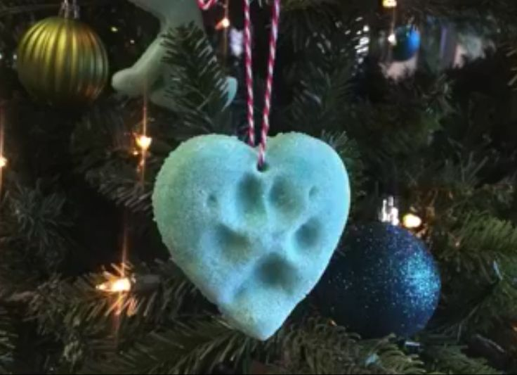 When it comes to the Holidays, we obviously want to include our pets. Whether it's giving them their own stocking above the fireplace, Christmas presents under the tree, or just showing them how much you care, we want our pets …