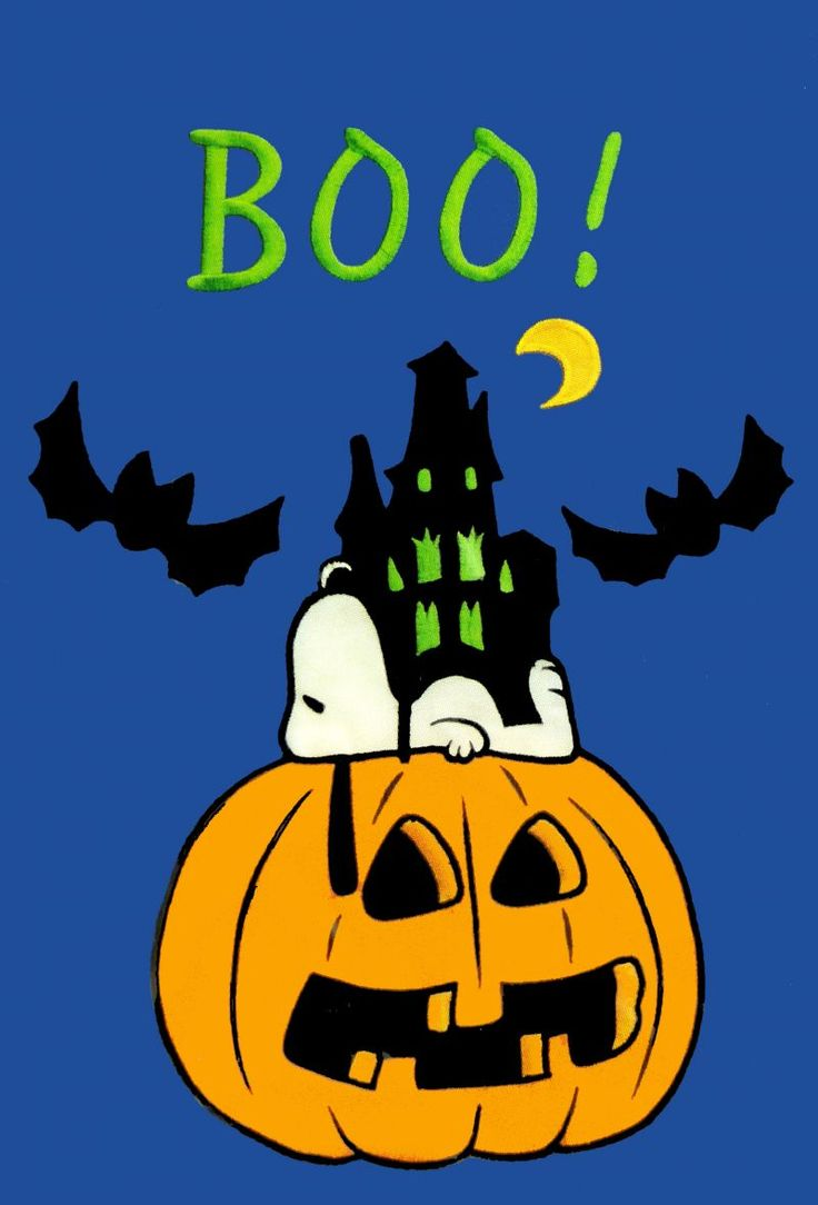 56 best SNOOPY AND PEANUTS GANG HALLOWEEN ! images on Pinterest