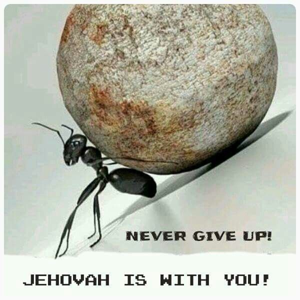 Never give up! It doesn't matter what others think they know or assume.. Jehovah is with you!! NEVER give up!