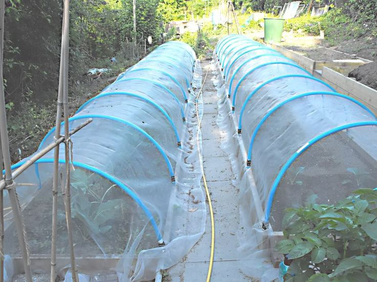 Home Made Cloches Secured With 51mm Foldback Clips 25mm