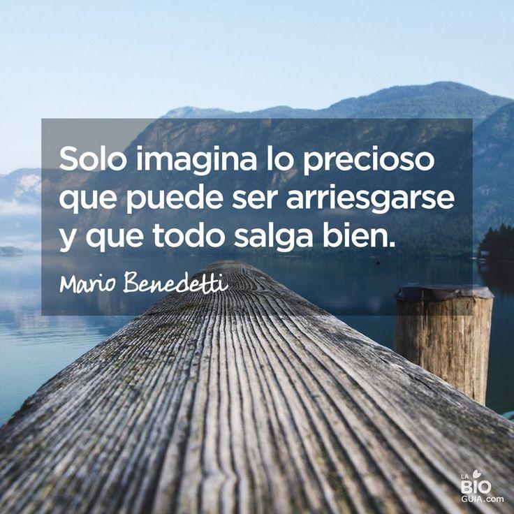 https://www.facebook.com/LaBioguia/photos/a.105017012881056.3271.104438892938868/1046258642090217/?type=3