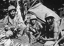 Fourteen Comanche code talkers took part in the Invasion of Normandy, and continued to serve in the 4th Infantry Division during further European operations.[5] Comanches of the 4th Signal Company compiled a vocabulary of over 100 code terms using words or phrases in their own language.