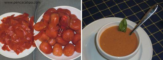 Sopa freda de tomàquet