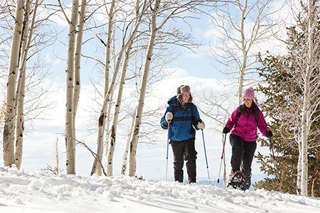Concedetevi delle salutari e tonificanti camminate in #montagna con le #ciaspole!  Scopri i nostri #consigli: http://www.dimmidisi.it/it/dimmicomefai/stare_in_forma/article/evviva_le_ciaspole.htm - #dimmidisi #benessere #salute #fitness #natura