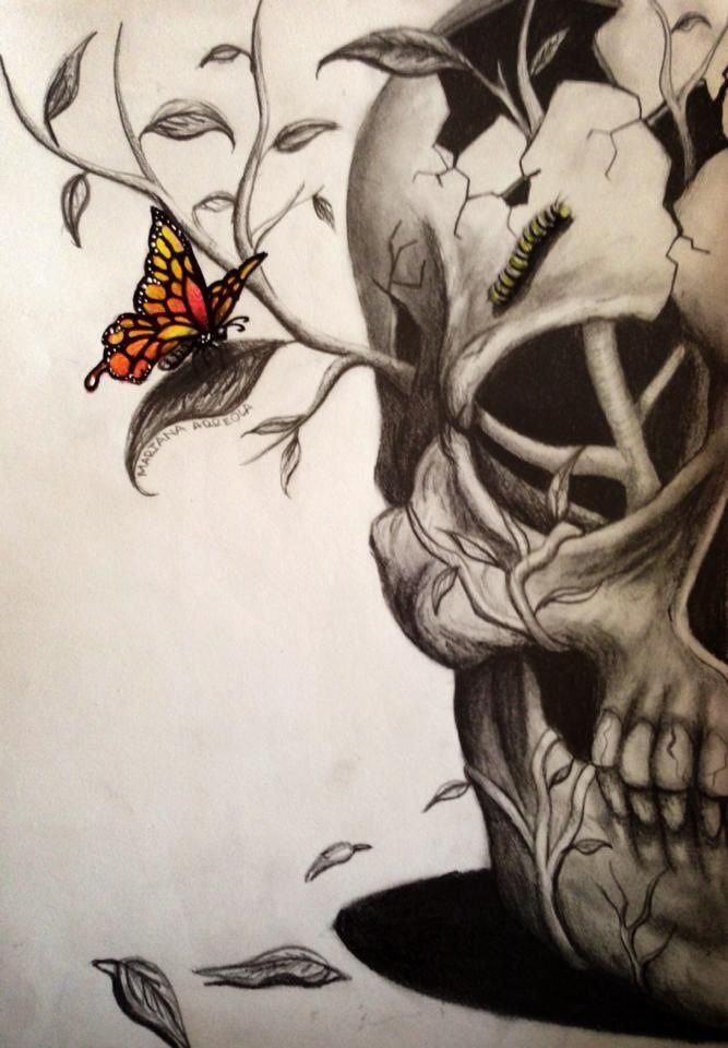 17 best ideas about skull art on pinterest skull tattoos for Cool drawings of butterflies