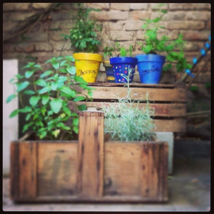 Huerta casera en macetas - do it yourself - patio Uriarte