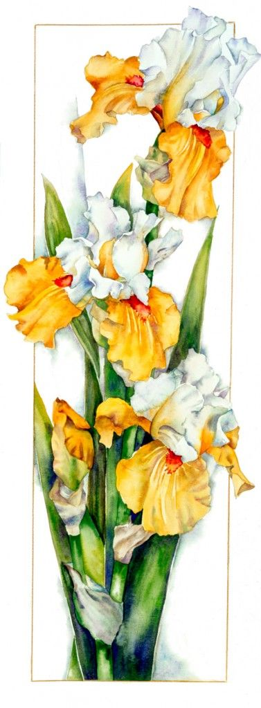 Iris Foundation Van Gogh | Sally Robertson Gallery. w/c