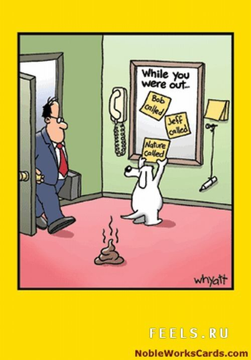 funny comics | Leo Asish: FUNNY CARTOONS!!!!