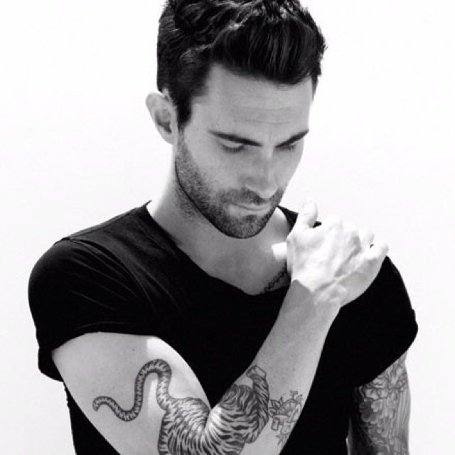 Adam Lavine.... You are sooooo beautiful to me ... Me and America that is.