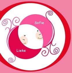 Geboortekaartje tweeling meisjes in wieg. De goedkoopste geboortekaartjes online ontwerpen en bestellen via http://www.geboortepost.nl/geboortekaartjes/tweeling/twins-in-red-cradle.html