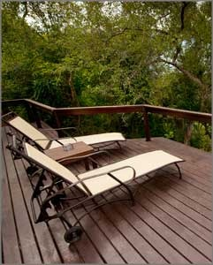 Private deck at Elephant Plains, South Africa
