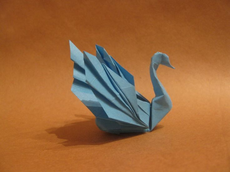 Best 25 origami swan ideas on pinterest origami paper for Origami swan folding instructions